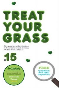 Treat Your Grass