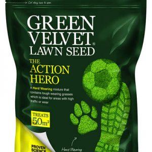 Green Velvet - the Action Hero grass seed
