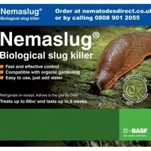 Nemaslug - biological slug killer