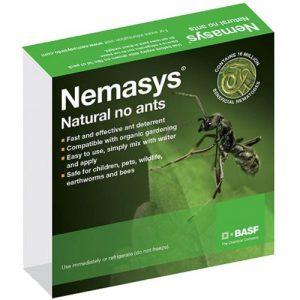 Nemaysy No Ants